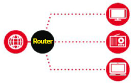 home network type 1