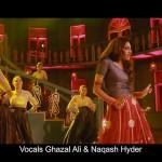 Zhalay Sarhadi Item Song in Jalaibee