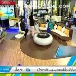 Dr Aamir Liqat Ki Phirse Nayi Harkat, Live Show K Darmiyan Sar Pe Dupatta Bandh Liya